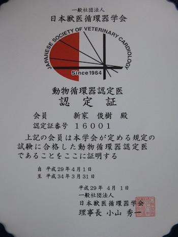 P1010081 (1)